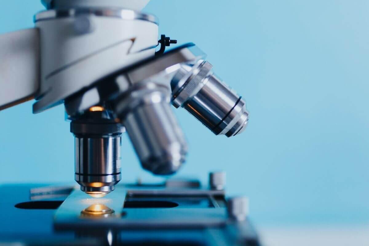 5 Reasons Candida Auris Threatens the Global Health Community