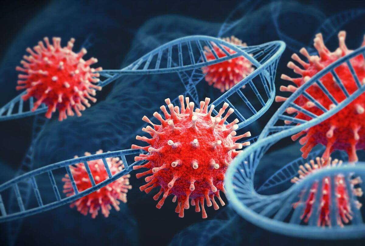Concern about the discovery of a new hybrid coronavirus mutation